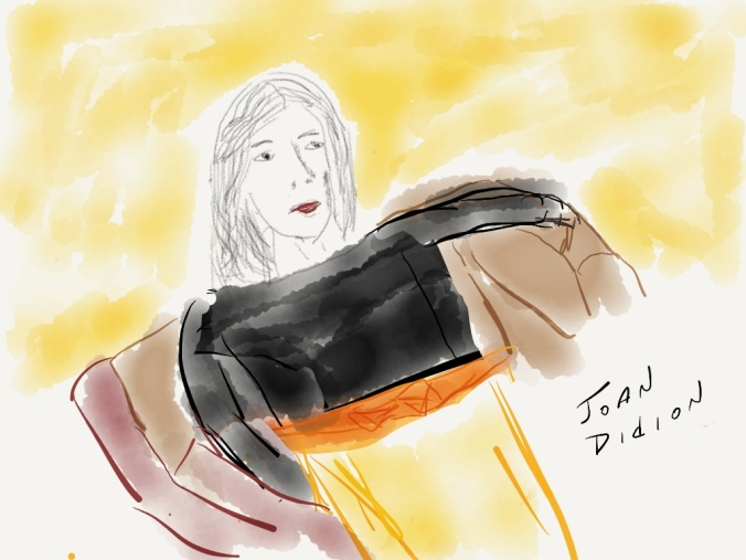 Joan Didion.  illustration 2013 jpbohannon  based on portrait by Lisa Congdon for Reconstructionists project