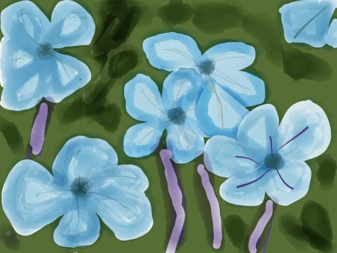 Blue Jasmine Illustration 2014 by jpbohannon