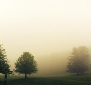 Fog Rolling In 2014 jpbohannon