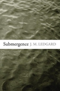 cover of the hardback edition of Submergence